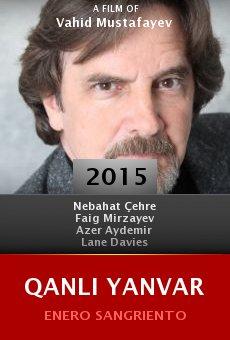 Ver película Qanli Yanvar