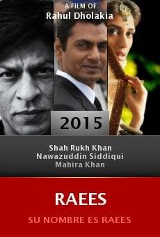 Ver película Raees