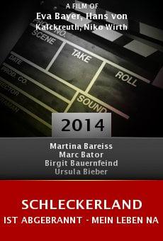 Ver película Schleckerland ist abgebrannt - mein Leben nach der Pleite