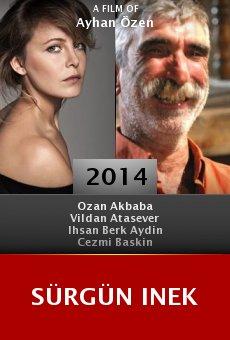 Ver película Sürgün Inek