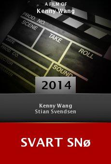 Ver película Svart Snø