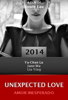 Watch Unexpected Love online stream