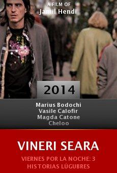 Ver película Vineri Seara