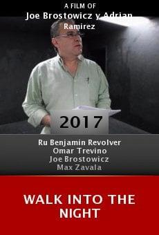 Watch Walk Into the Night online stream