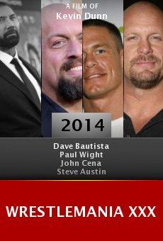 Ver película WrestleMania XXX