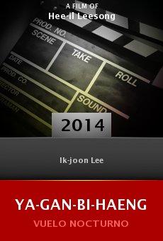 Ver película Ya-gan-bi-haeng