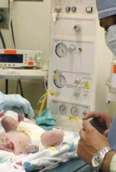 Bebés en la oficina online gratis
