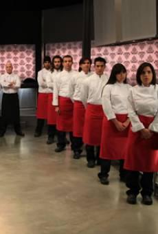 Cocineros al límite online gratis