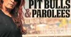Pit bulls y convictos