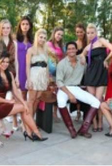 Once chicas en busca de un hombre perfecto online gratis