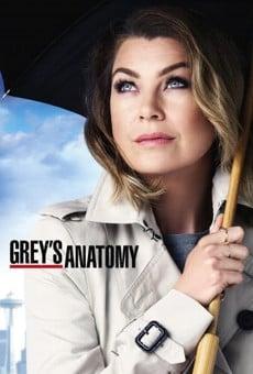 Anatomía según Grey online gratis