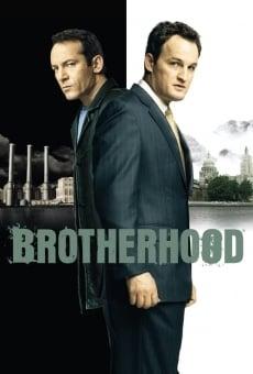 Brotherhood online gratis
