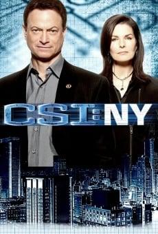 CSI NY online gratis