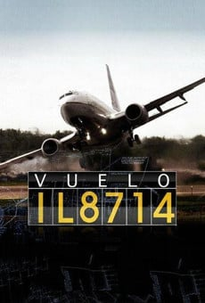 Flight 8714, Take Off to Disaster online gratis