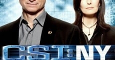 Serie CSI New York