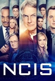 NCIS online gratis