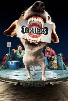 Terriers online gratis