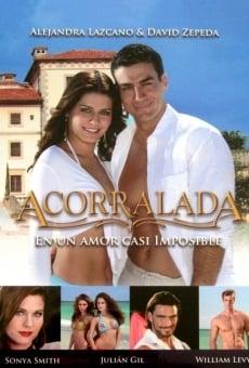 ACORRALADA - Telenovela en Español - Capítulos