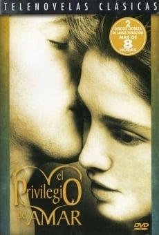 El privilegio de amar online gratis