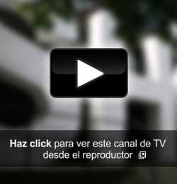 Canal 26 en vivo