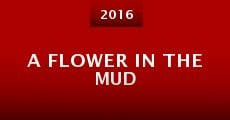 A Flower in the Mud (2016)