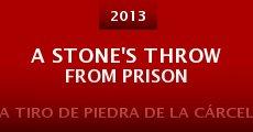 Ver película A tiro de piedra de la cárcel