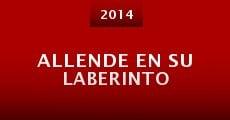 Allende en su laberinto (2014) stream