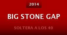 Película Big Stone Gap
