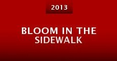 Bloom in the Sidewalk (2013)