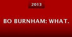 Bo Burnham: what. (2013) stream