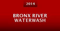Bronx River Waterwash (2014) stream