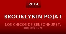 Brooklynin pojat (2014) stream