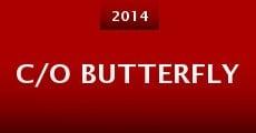 c/o Butterfly (2015)