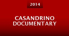 Casandrino Documentary (2014)
