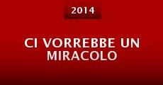 Ci vorrebbe un miracolo (2014)
