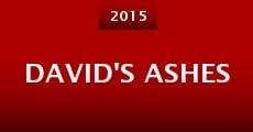 Película David's Ashes