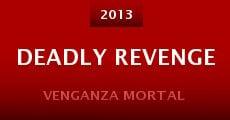 Deadly Revenge (2013) stream