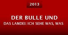 Der Bulle und das Landei: Ich sehe was, was du nicht siehst und das ist ... tot (2013)