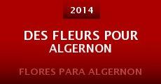 Des fleurs pour algernon (2015)