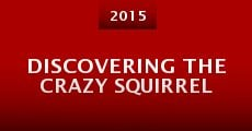Discovering the Crazy Squirrel (2015) stream