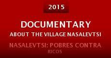 Documentary About the Village Nasalevtsi (2014) stream