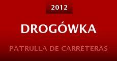 Drogówka (2013) stream