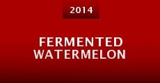 Película Fermented watermelon