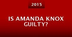 Is Amanda Knox Guilty? (2014)