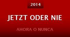 Jetzt oder Nie (2014) stream