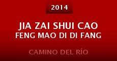 Película Jia zai shui cao feng mao di di fang