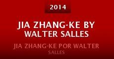 Película Jia Zhang-ke by Walter Salles