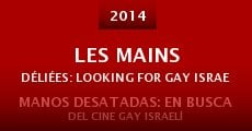 Les mains déliées: Looking for gay Israeli Cinema