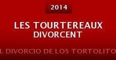 Película Les tourtereaux divorcent