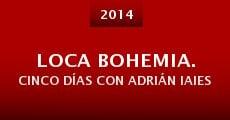 Película Loca bohemia. Cinco días con Adrián Iaies